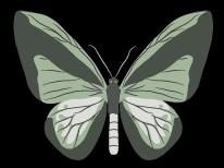 goliath-Logo-hellgrau_schwarz